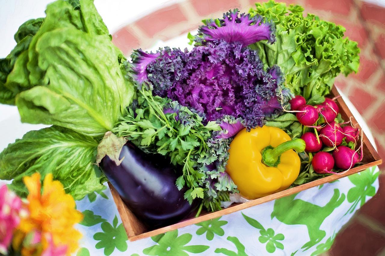 vegetables-790022_1280.jpg