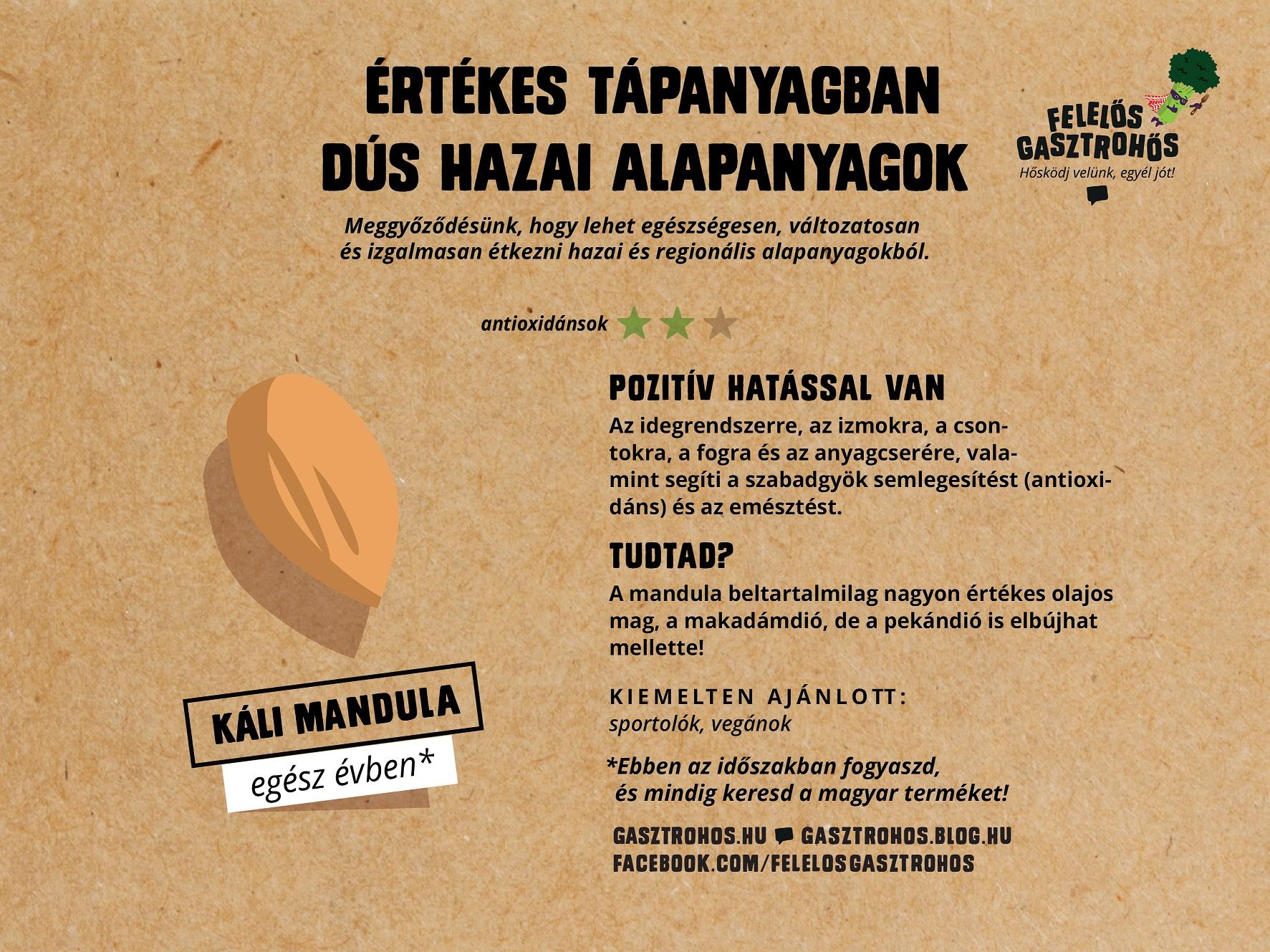 gasztrohos-superfood-kis-superfoodok-infografika-facebook-03.jpg