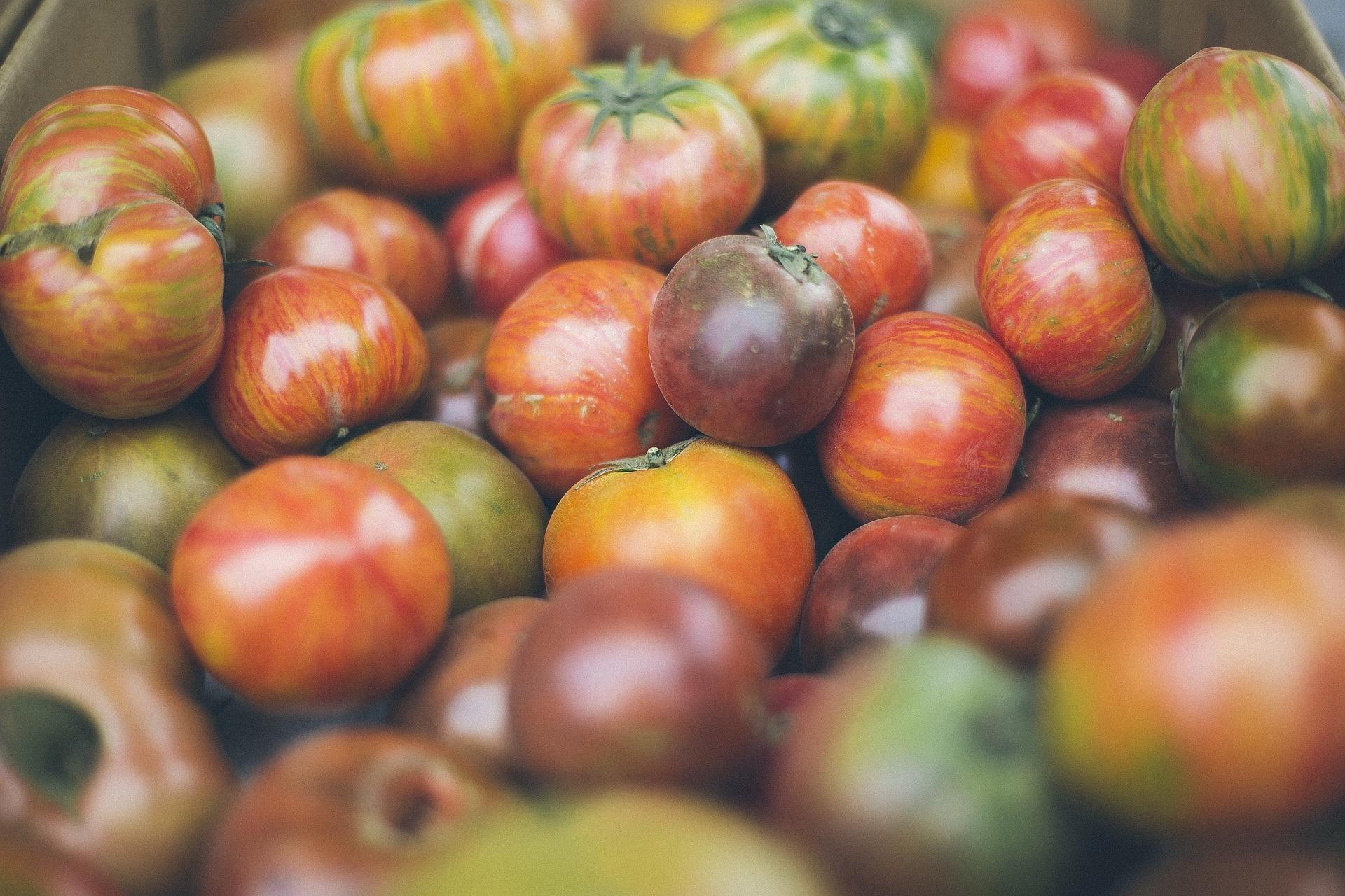 tomatos-960795_1920.jpg