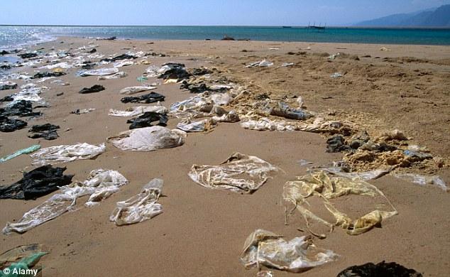 műanyag zacskó a tengerparton.jpg