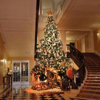 Bemutatták a Dolce & Gabbana karácsonyfáját