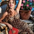 Sophia Vergara testhez álló szerepet kapott