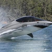 A cáparepülő tengeralattjáró