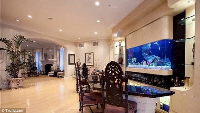 akvárium.jpg