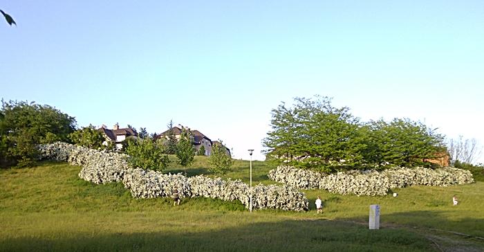 Tavaszi park 1.JPG