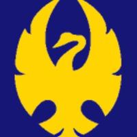 warmachine frakciók: cygnar