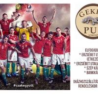 EB 2016 - Gekko Pub