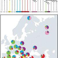 A paleolitikumi homo sapiens sapiens genetikai öröksége a ma élő európaiakban az apai öröklődésű Y kromoszóma vizsgálatok alapján (összefoglalás)