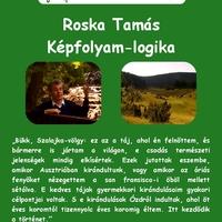 Szerelmes Földrajz - Roska Tamás: Képfolyam logika (2005. november)