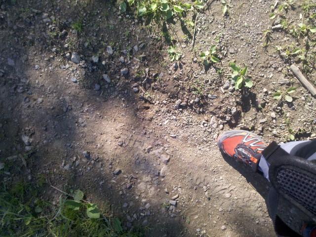 13+1 cipőápolási tanács geoTESZT