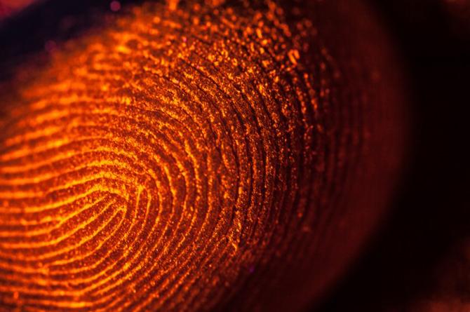 fingerprint1.jpg