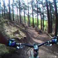 Holnap: Cannock Chase Monkey Trail
