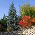 A kerttervezés legfontosabb eleme nem virág, hanem a megrendelő