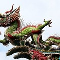 A kínai vakcina és a motivációs konfliktus