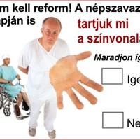 Népszavazás 08.03.09