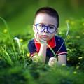 Zöld megoldás nélkül: szemüvegcsere