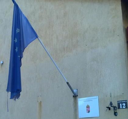 Európai Uniós zászló - Sallert a kopaszra