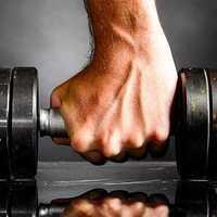 A testedzés hálójában