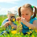 Gyermekeink egészség- és agyfejlesztése