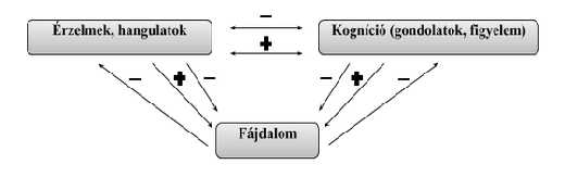 gerinces_fájdalom_kognitiv_blog.jpg