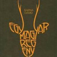 Egy magyar regény