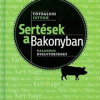 Sertések a Bakonyban
