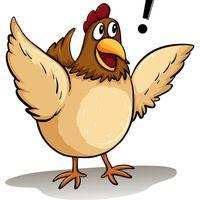 Jó és rossz mozgásminták, avagy miért szaladgál a lefejezett csirke?