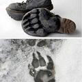 Téli berek rovat