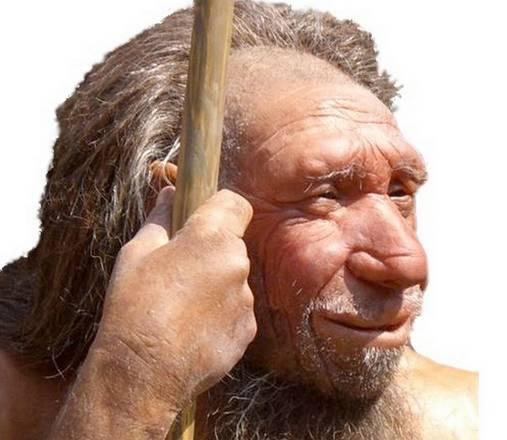 Könnyebben lélegeztek neandervölgyi őseink