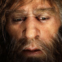 Allergiáinkért a neandervölgyi a felelős