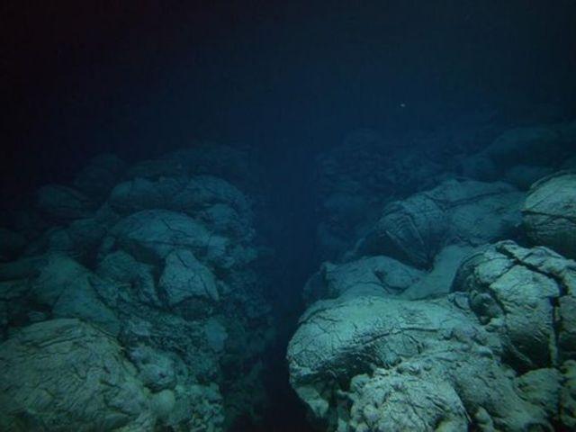 Az óceánok mélyének hangjai