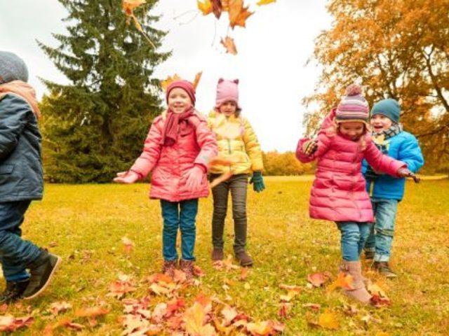 Egy hónap a természetben javítja a gyerekek immunrendszerét