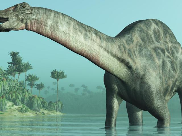 A dinoszauruszok vére