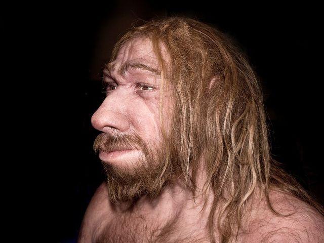 Mit evett a neandervölgyi ember?