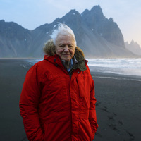 Sir David Attenborough újra a Földről mesél