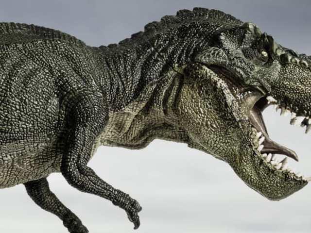 Milyen volt valójában a dinoszauruszok királya?
