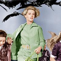 Nem a madarak zaklatták Tippi Hedrent…