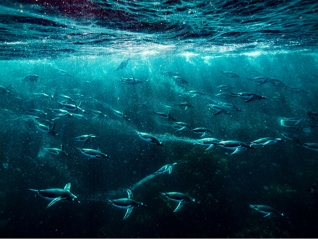 A víz terhe alatt süllyednek az óceánok