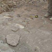 Megtalálták a Homo Erectus első nyomait