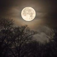 Hogyan képzeljük el a jövőt 100 évvel a Holdraszállás után?
