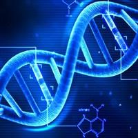 Lehet, hogy regisztrálják a DNS-ünket egy távoli rokon miatt?