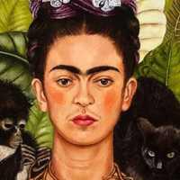 Frida Kahlo digitális megismerése