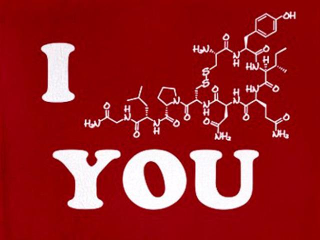 A szeretet génje