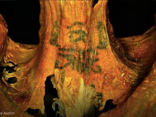 3300 éves tetovált asszony