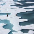 Visszaállítható-e az Északi-sarki jégtakaró?