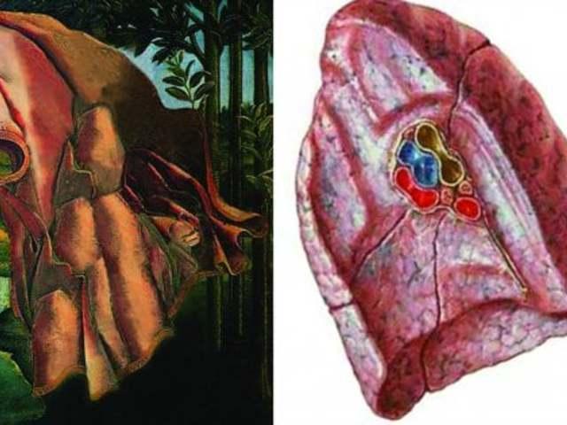Az élet szimbóluma Botticelli Vénuszán Flóra köntöse alatt