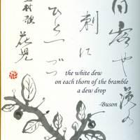 A haiku, a pozitív pszichológia szövetségese