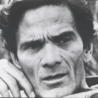 Negyven év után sem tisztul a köd a Pasolini-ügyben