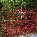 Megnyílt a látogatók előtt a Strawberry  Field