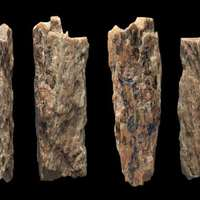Szibériában megtalálták egy 50 ezer éves félvér lány csontját